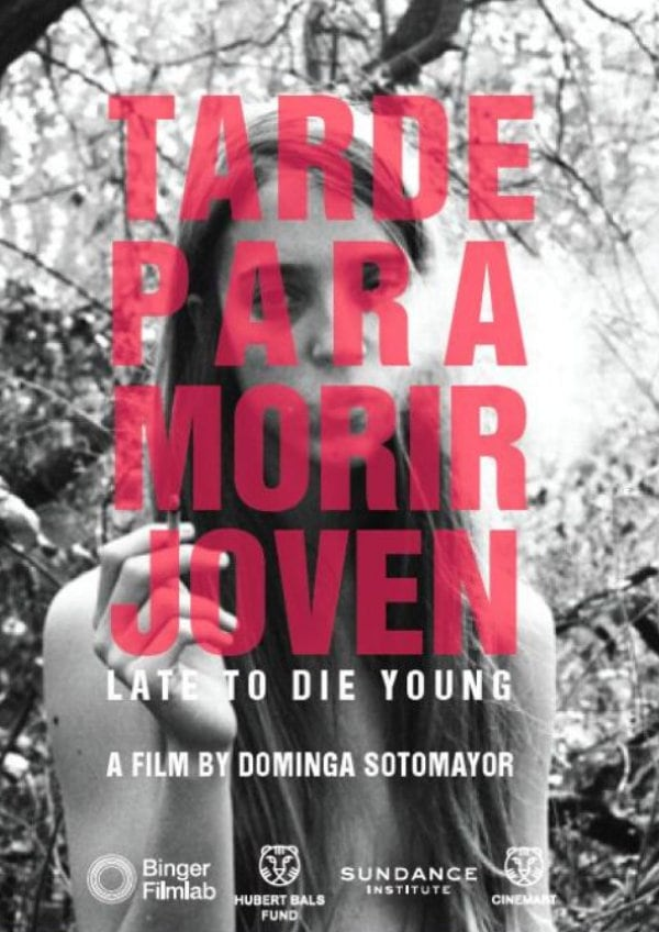 'Too Late To Die Young' movie poster