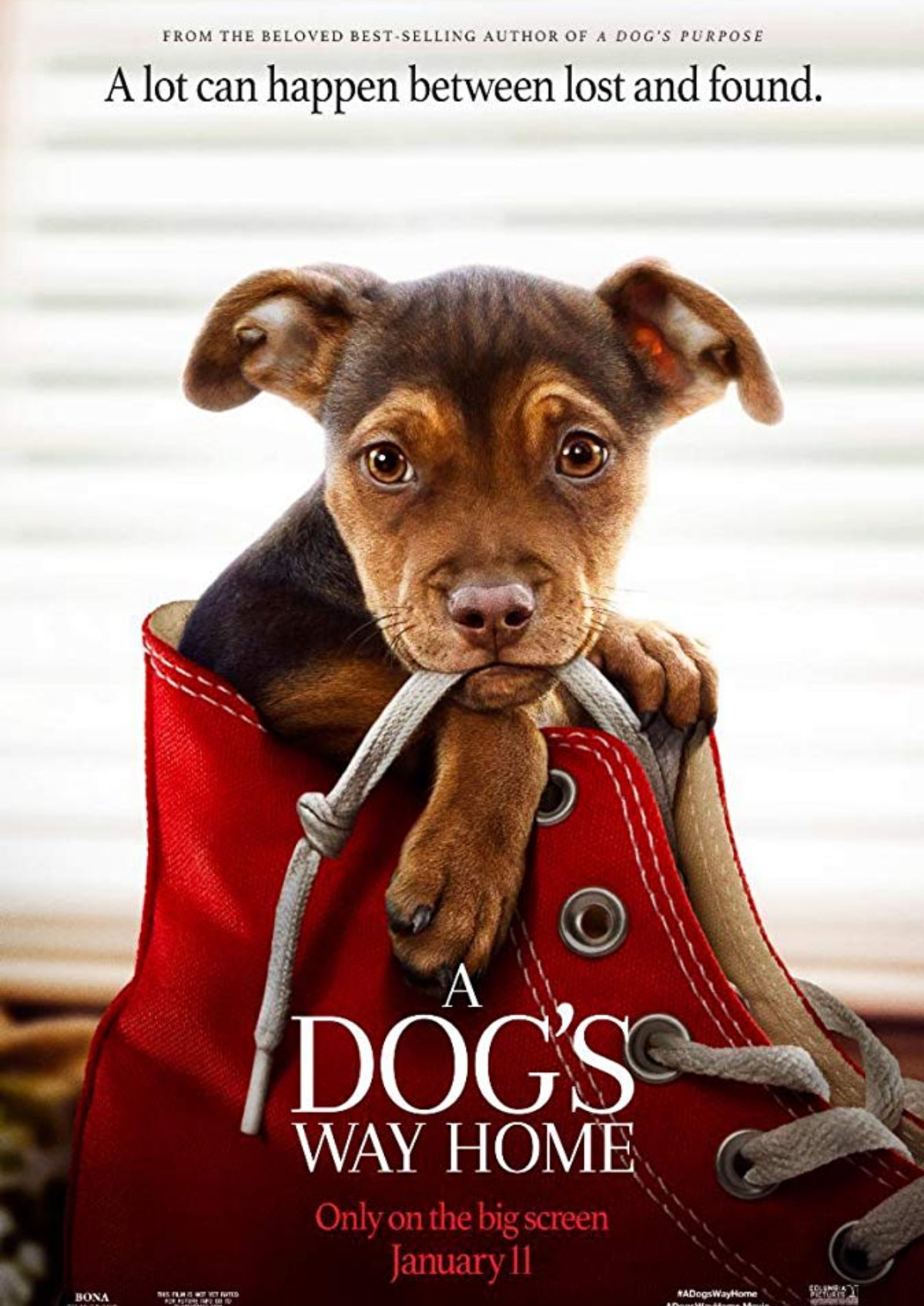'A Dog's Way Home' movie poster