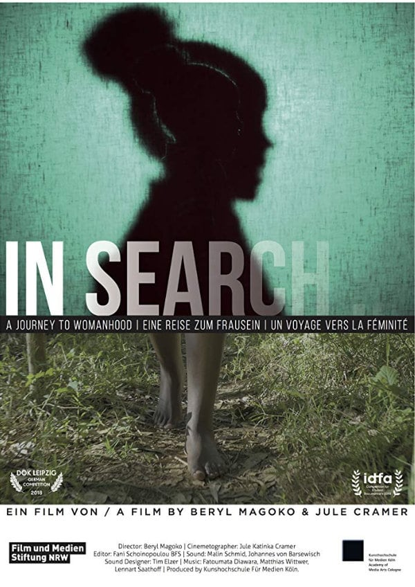 'In Search...' movie poster