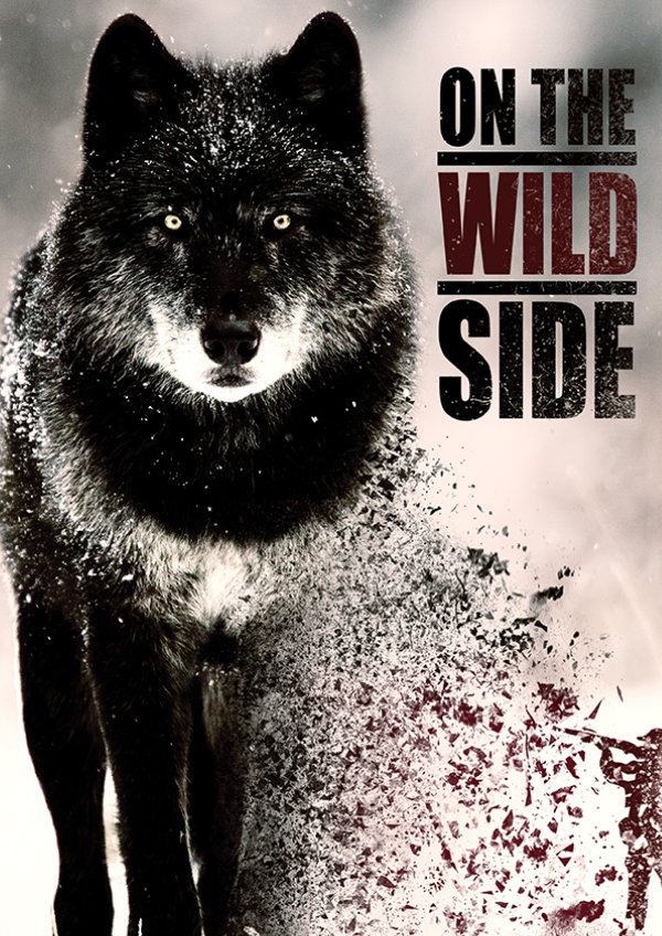 'On The Wild Side' movie poster